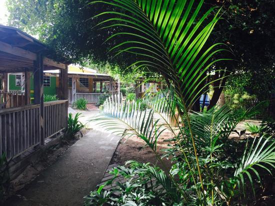 Villa Flamenco Beach: photo3.jpg