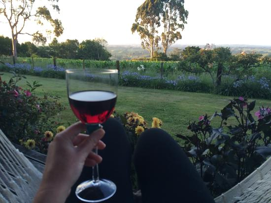 Kamahi Cottage: Enjoying wine in a hammock on the porch for the sunset