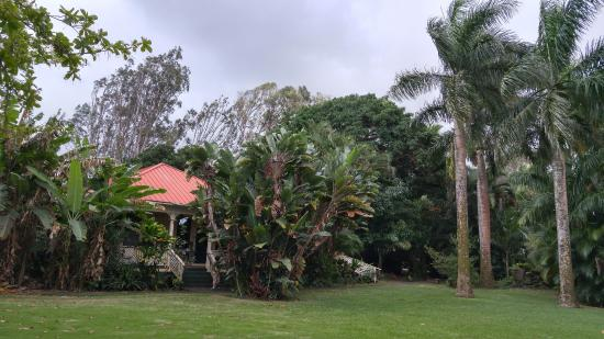 Haiku Plantation Inn: Maui Bed and Breakfast: Expansive Front Yard and entrance stairway.