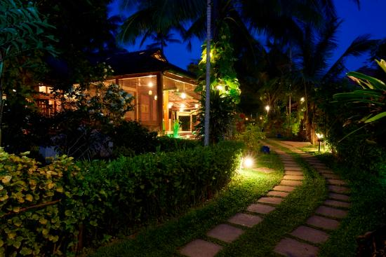 Cassia Cottage: Garden at night