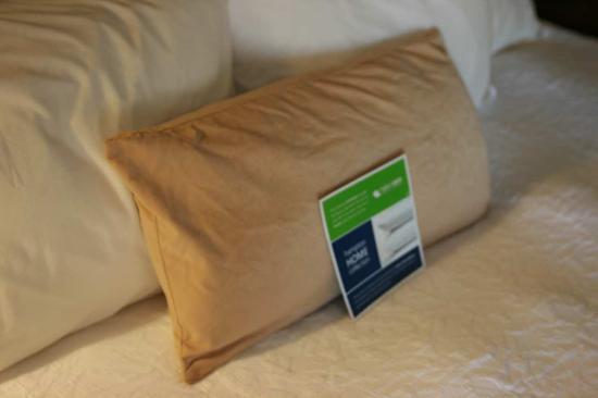 Hampton Inn Madison East Towne Mall Area: Lumbar Pillow