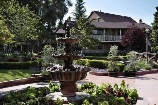 Paso Robles Inn: Beautiful Gardens