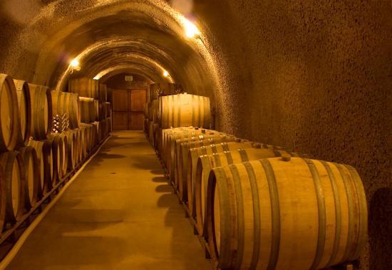 Paso Robles Inn: Explore Wine Caves