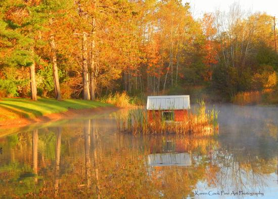 Kingston, Канада: Stronach Park duck pond in Autumn. It is beautiful!