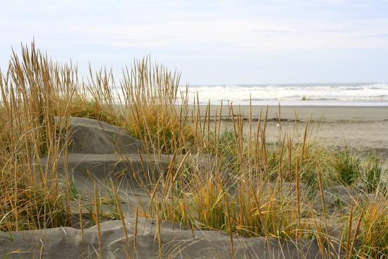 Ocean Shores, WA: Beach