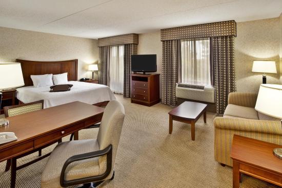Hampton Inn & Suites Richmond/Virginia Center: Queen Sofa