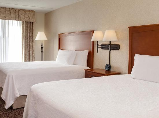 Hampton Inn Dubuque: Queen Beds
