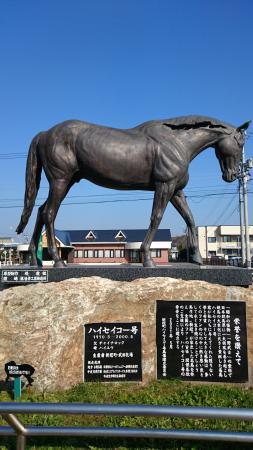 Niikappu-cho, اليابان: 新冠