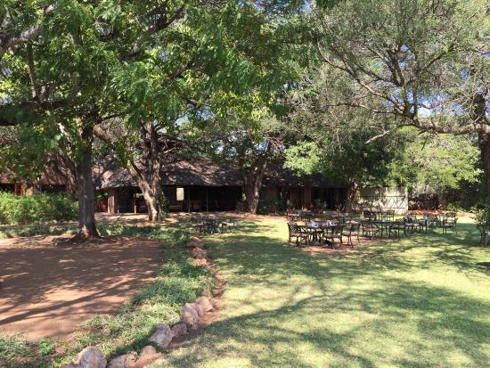 Mohlabetsi Safari Lodge: photo2.jpg