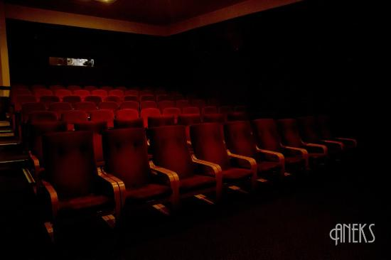 Kino Ars
