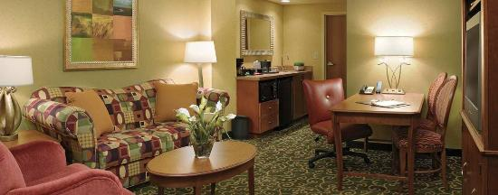 Embassy Suites by Hilton St. Louis St. Charles: Suite Livingroom