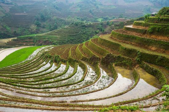 Vietnam in Focus - Photo Tours and Workshops