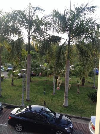 Palm Garden Hotel Photo