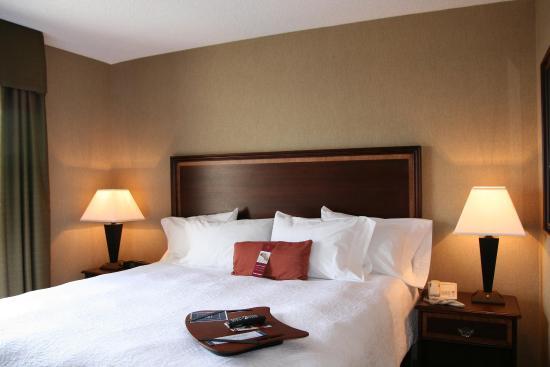 Siloam Springs, AR: King Bed Guestroom