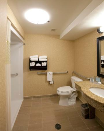 Hampton Inn Lexington Park: Accessible Bathroom