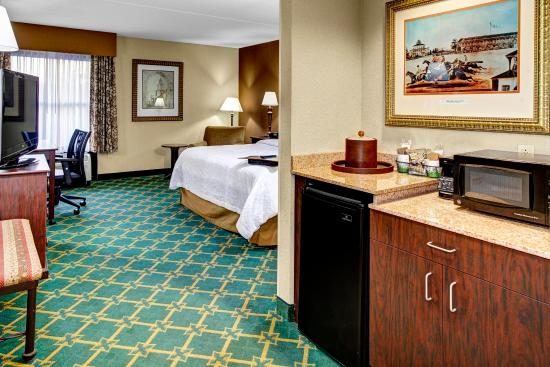 Hampton Inn Baltimore - Washington International Airport: Accessible King Room with Shower