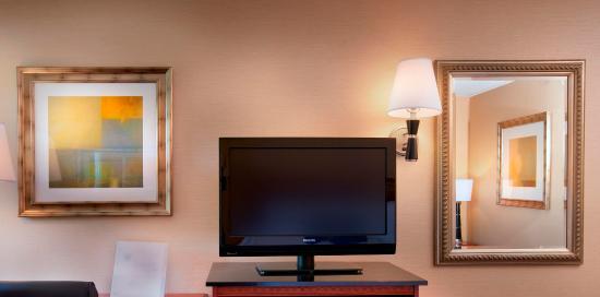 Hampton Inn Alexandria/Pentagon South: Flat Screen Televisions