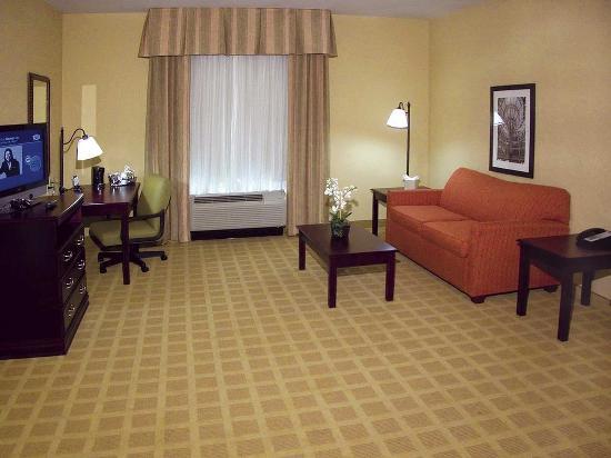 Hampton Inn Baton Rouge - Denham Springs : Suite Living Area