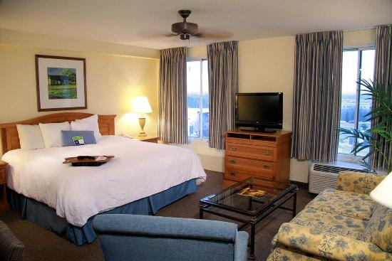 Hampton Inn & Suites Austin - Airport照片