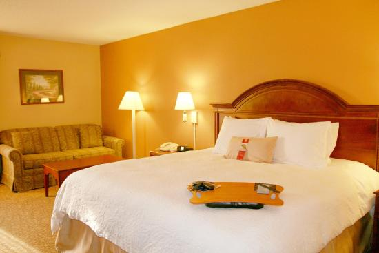 McLeansville, NC: Guest Room King