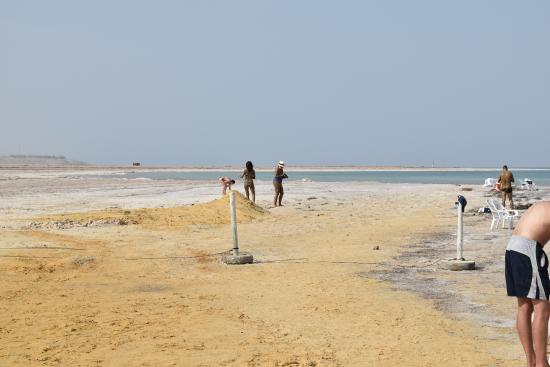 dead sea beach picture of ein gedi spa ein gedi tripadvisor rh tripadvisor com where is the dead sea located on a map