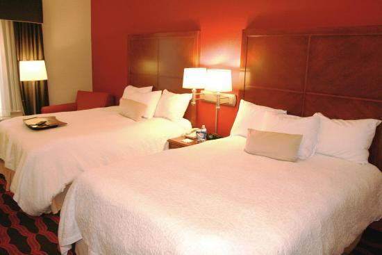 Hampton Inn & Suites East Lansing / Okemos: 2 Queen Accessible