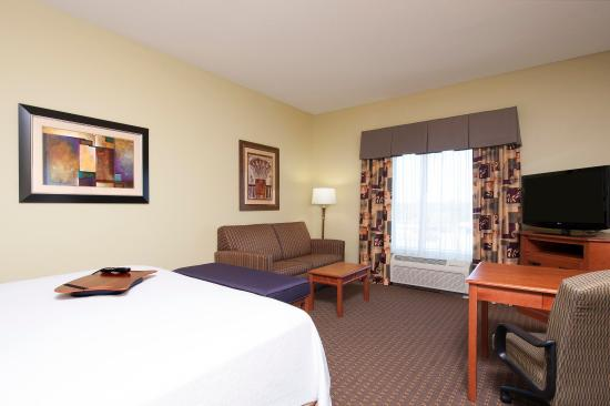 Hampton Inn & Suites Grand Rapids Airport / 28th St: One King Bed