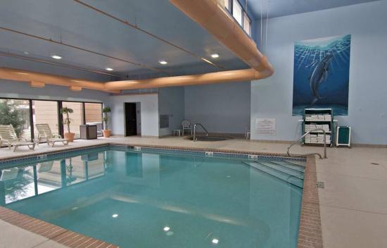 Hampton Inn Columbus South: Indoor Pool