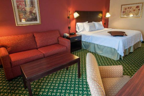 Hampton Inn Boise - Airport: 1 King Bed Guestroom with Study