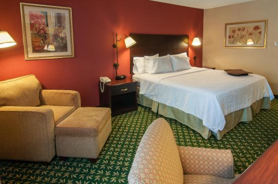 Hampton Inn Boise - Airport: King Standard 1