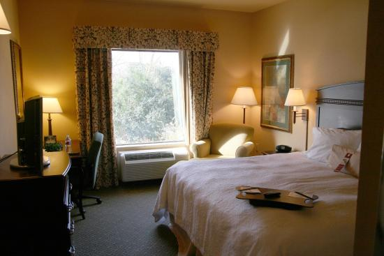 Hampton Inn & Suites Fredericksburg: Standard King Room