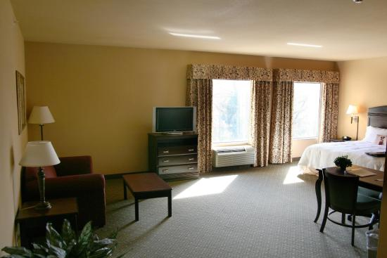 Hampton Inn & Suites Fredericksburg: King Studio Suite