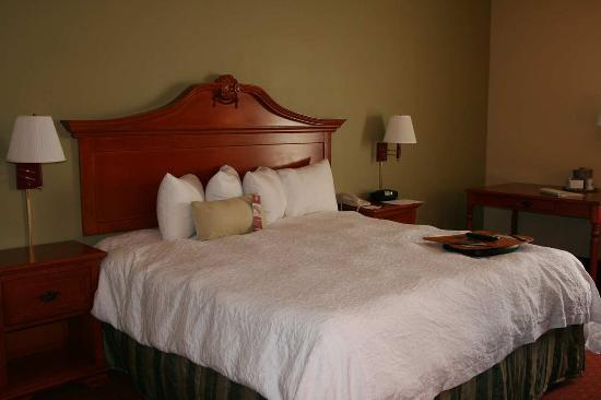 Matthews, Carolina del Norte: Accessible King Guest Room