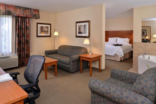 Hampton Inn Idaho Falls At the Mall: 1 King Suite