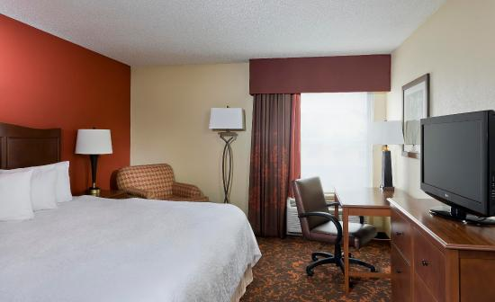 Tinley Park, IL: King Guest Room