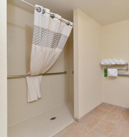 Hampton Inn Rock Springs: Bathroom