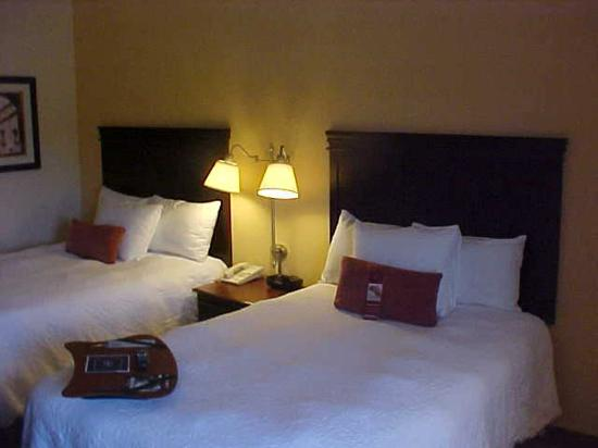 Hampton Inn Greenville : Two Double Beds