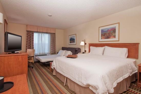 Hampton Inn Phoenix/Chandler: 1 King Sofabed