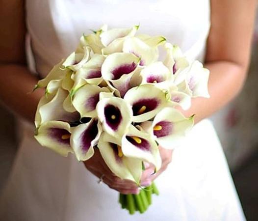 อาร์คเดล, นอร์ทแคโรไลนา: Weddings