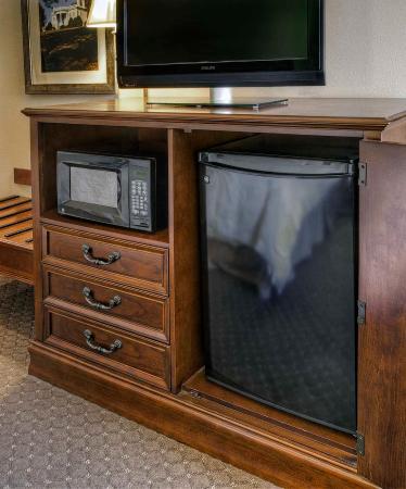 Hampton Inn Kingsport: Microwave/fridge in Room