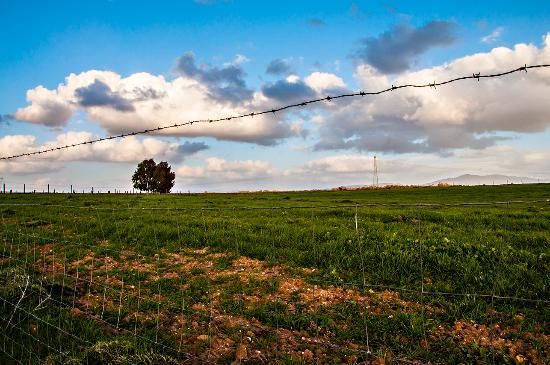 Agriturismo Serras D'Ala