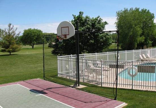 Brookfield, WI: Sport Court
