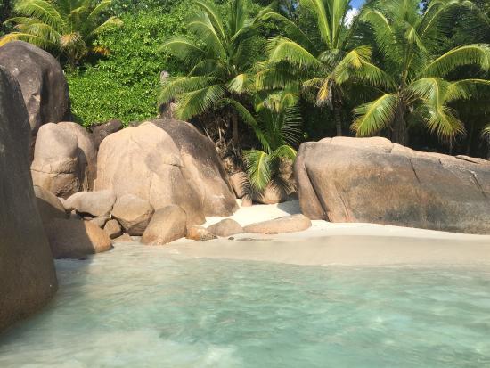 Wyspa Praslin, Seszele: photo2.jpg