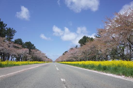 Ogata-mura, Japón: photo0.jpg
