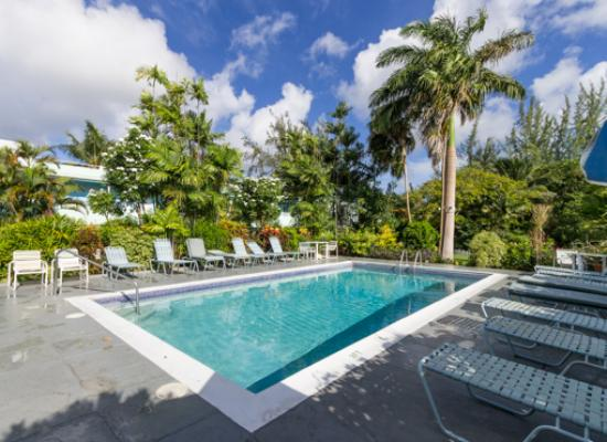 The Palm Garden Hotel: Pool area with lush foliage