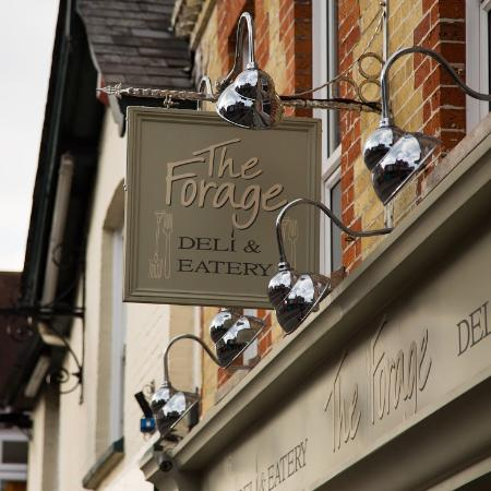 The Forage Deli & Eatery