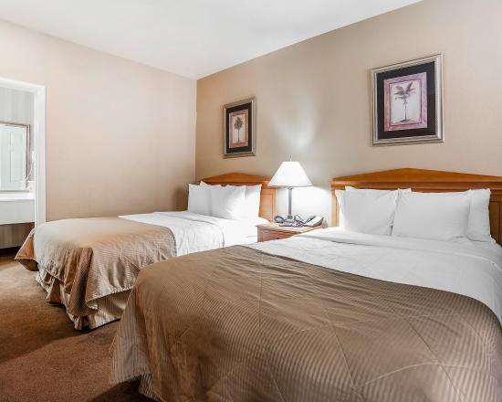 Clarion Suites: Queen Room