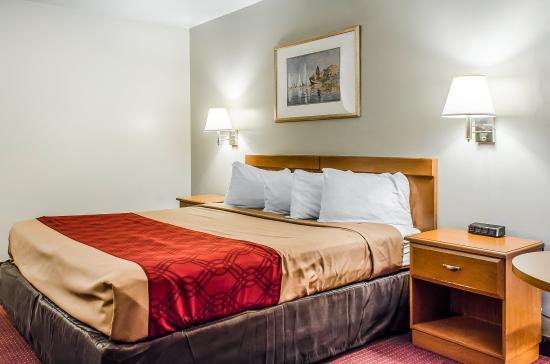 إكونو لودج نورث إيست: Guest Room