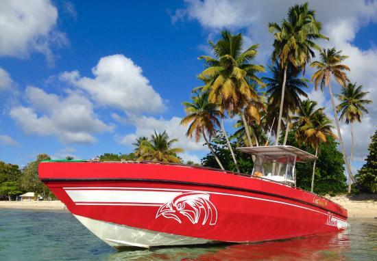 Cool Caraïbes : Depuis mai 2016 changement d'exploitant pour ce nouveau bateau à Petite-Terre & Marie-Galante