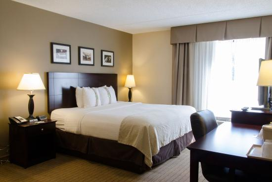 Kalamazoo, MI: Single Bed Guest Room